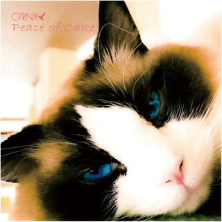 CPRNX 3rd (13th) Single [Peace of cake]