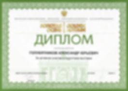 Диплом Голубятников Алексндр Юрьевич