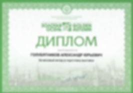 Дипло Голубятников Александр Юрьевич