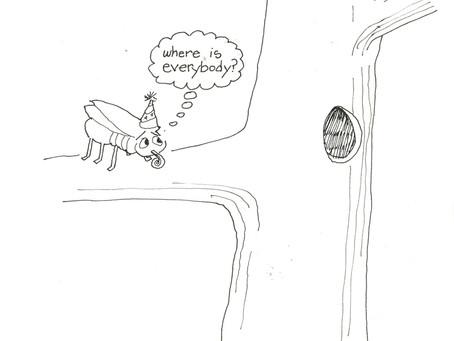 The 18 year locust