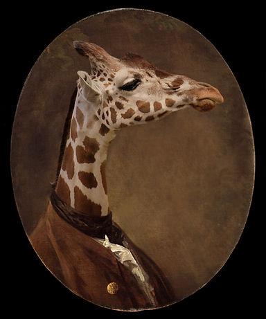 Girafe Édition Limitée