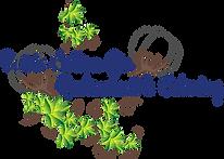 BCG LIght BOX logo (1).png