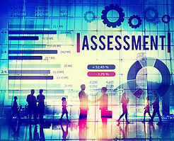 Information Optimization Assessment - Fortenberry & Associates - Packaged Information Management Conuslting