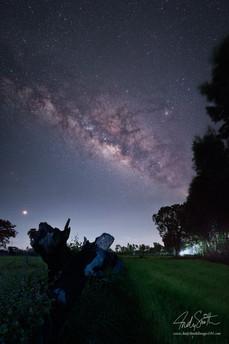 Milky Way over Roi Et, North Eastern Thailand