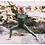 Thumbnail: Leggings Nina