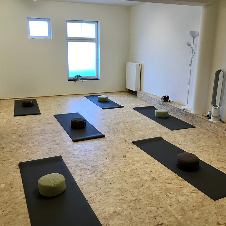 Start to Yoga Workshop - Leuven