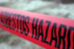 Asbestos, Lead, Mould, Hazardous material abatemet