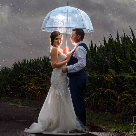 Alyssa & Tom | Naylor Farms | Michigan Wedding