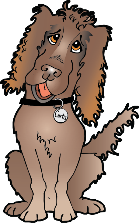 Curtis - Working Cocker Spaniel Cartoon