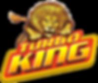 turboking-logo.png