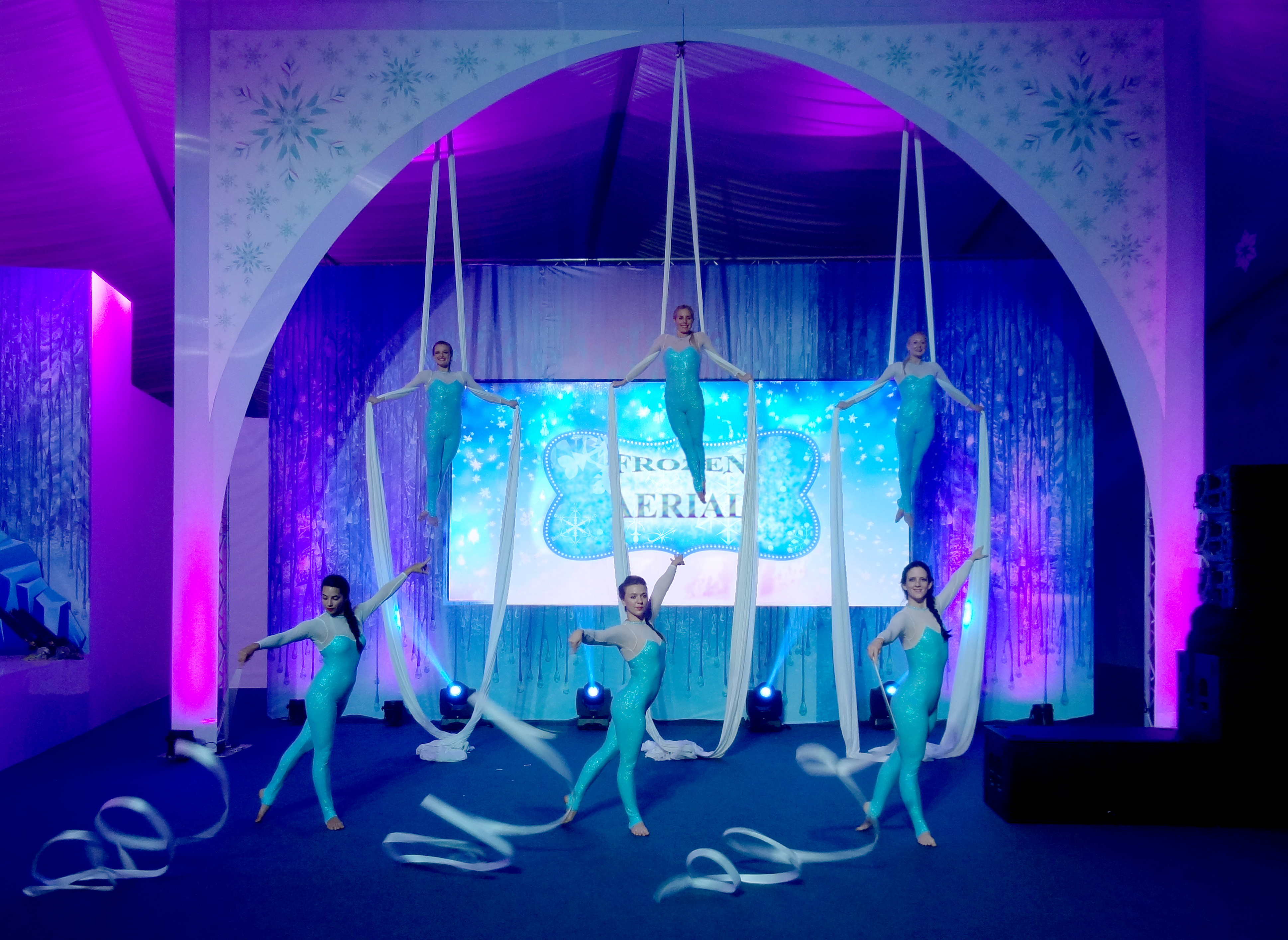 Frozen Aerial Silks