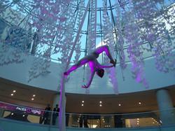 Aerial Silks Beirut Shopping Centre