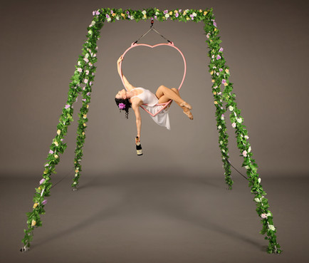 Enchanted Garden - Aerial Heart Champagne