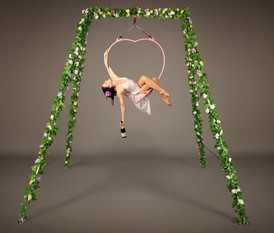 Enchanted Garden Freestanding Aerial Rig with Aerial Heart