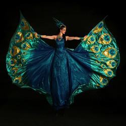 Peacock Stiltwalker