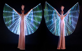 LED Mariposa (2).jpg