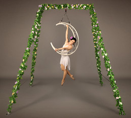 Enchanted Garden Freestanding Aerial Rig with Crescent Moon
