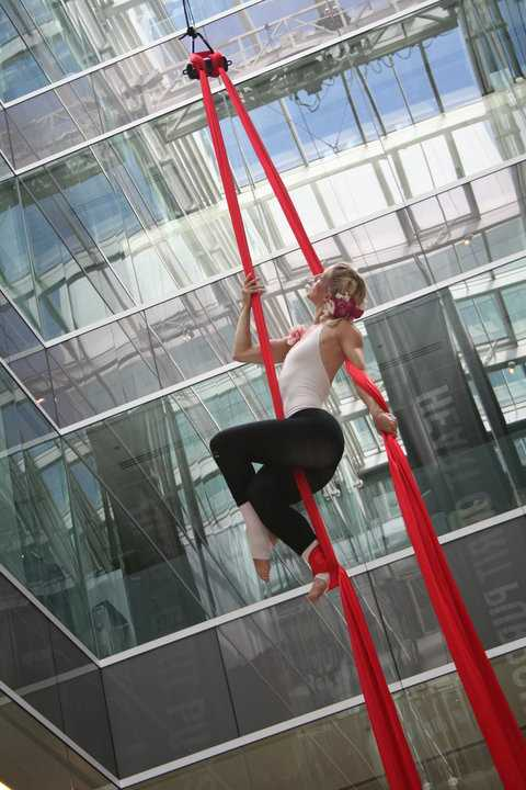 Aerial Silks - Corporate Launch