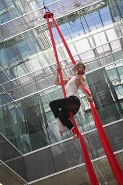 Aerial Silks - Corporate Launch