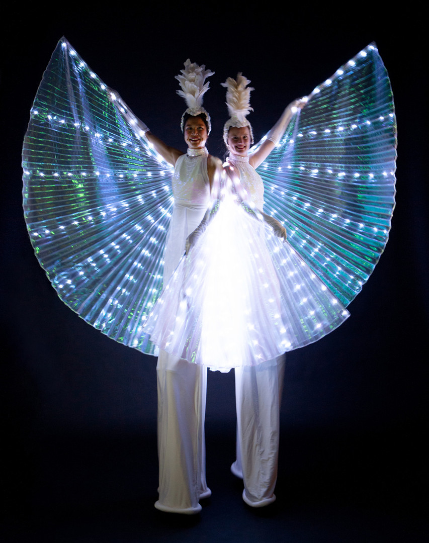 LED Mariposa (1).jpg