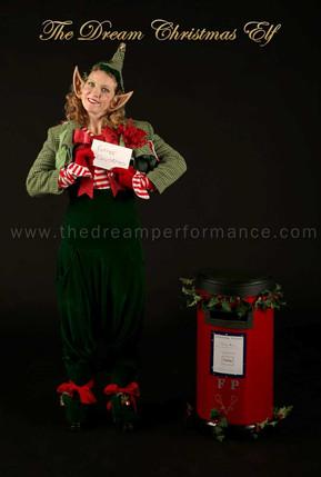 The Dream Christmas Elf.jpg