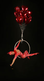 aerial bartending champagne hoop lyra