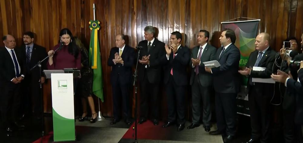 (Foto: Reprodução / Vídeo / TV Globo)