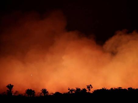 Bolsonaro autoriza envio de tropas das Forças Armadas para combater focos de incêndio e desmatamento