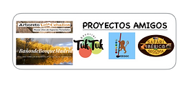 PROYECTOSAMIGOS.png