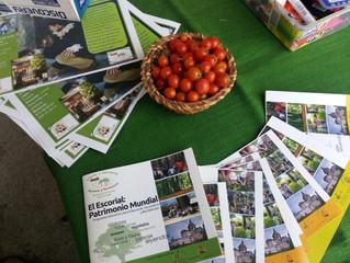 Feria de la Sostenibilidad en Villanueva del Pardillo