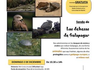 Dehesas de Galapagar. Ruta interpretativa