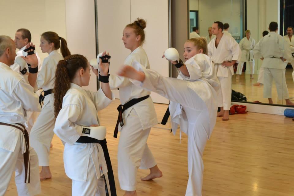 Advanced Kata and Kumite Course
