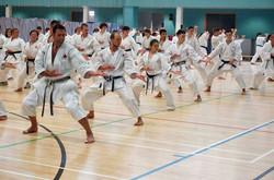 The Karate Summer School Lancast.jpg