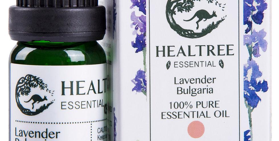 Lavender Essential Oil - Bulgaria 100% Pure Lavender Oil - 10ml