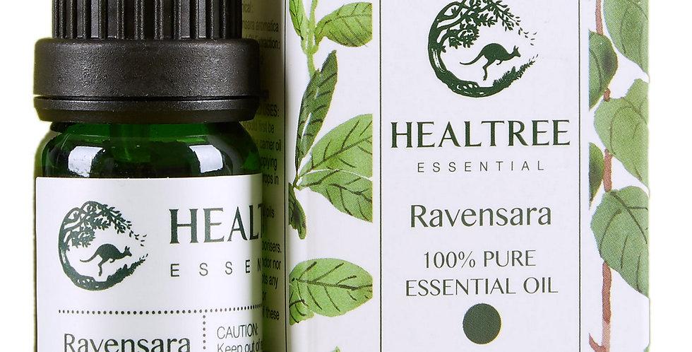 Ravensara Essential Oil - 100% Pure Ravensara Oil - 10ml