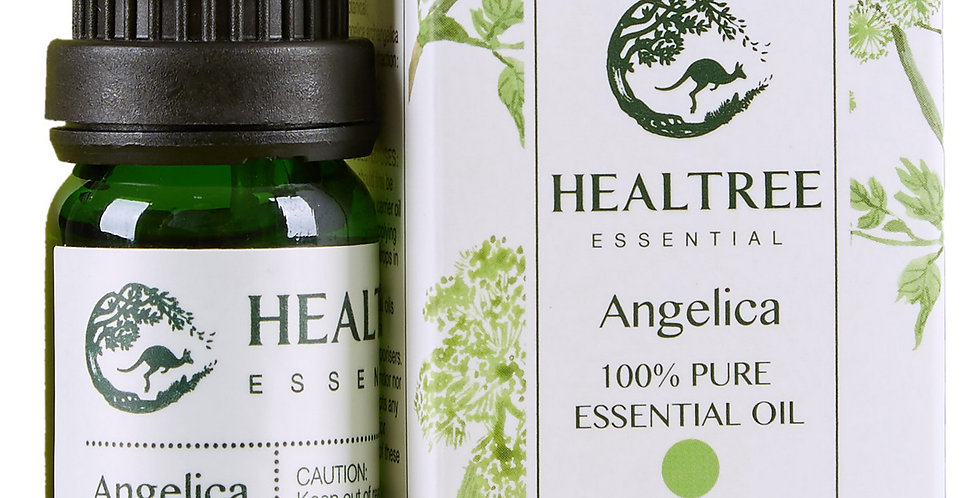 Angelica Essential Oil - 100% Pure White Angelica Oil - 10ml