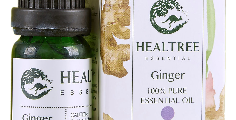 Ginger Essential Oil - 100% Pure Ginger Oil - 10ml