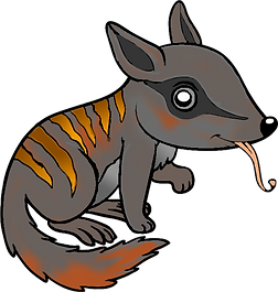 Numbat-Colouring.png