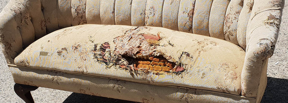 woodwards_upholstery_queen_anne_sofa_bef
