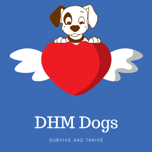 DHM-Dogs.png