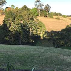 Karen Woodbridge View From Bunya.jpeg