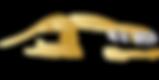 Logo_MMWT.png
