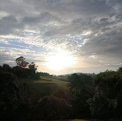 Leesa Hammond - Sunset.jpg