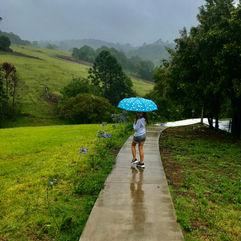 Ms Kathleen Ross Walking In the rain.jpe