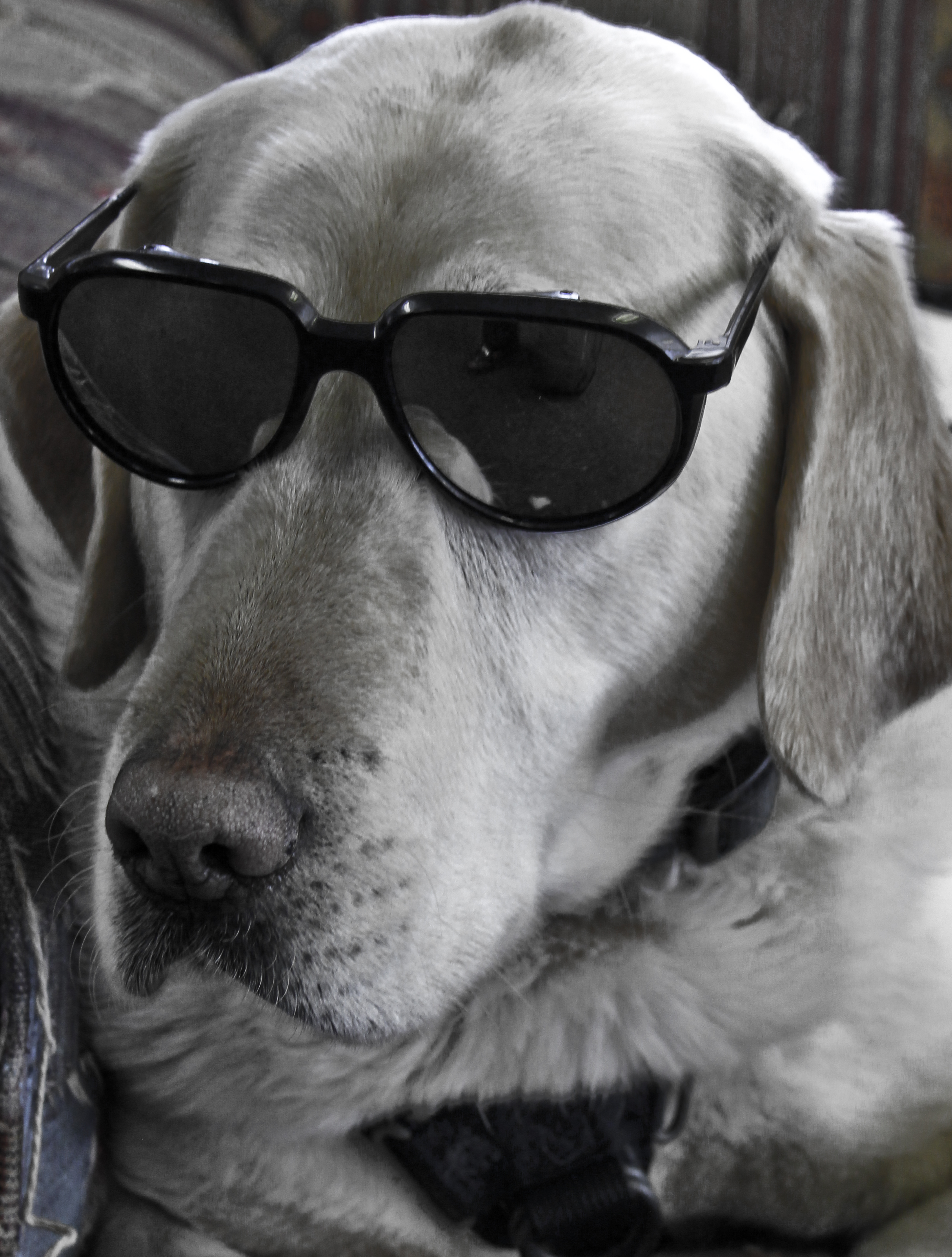 Hattie's just too cool.