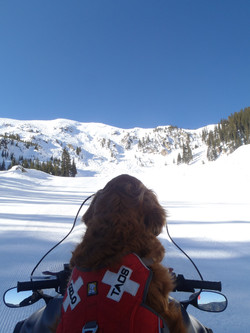 Ozlo loves snowmobile rides!