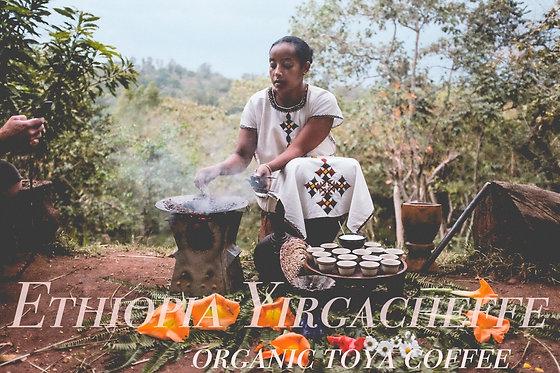 エチオピア イルガチェフェG2 コンガ農協 オーガニック/フェアトレード