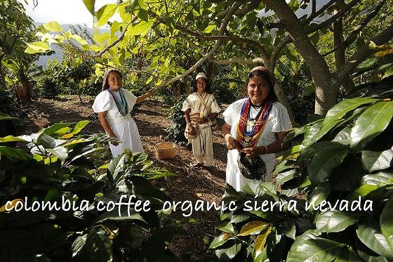 トヤ珈琲 コロンビア シエラヴァダ 無農薬 無化学肥料 フェアトレード toya coffee