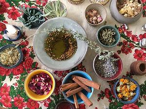 סדנה: ארון התרופות של הטבע