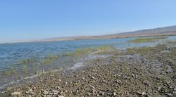 Берег озера Тасколь